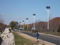 6米LED太阳能路灯_农村道路路灯案例_红富照明