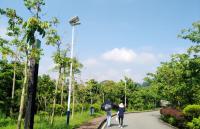 生态公园亮化照明工程_绿道太阳能路灯_led投光灯工程案例